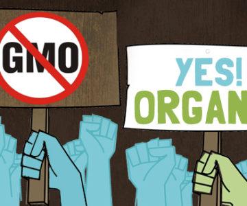 No GMOs, Yes Organic