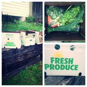 Butchie's Organic Farm Boxes